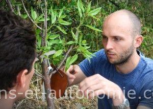 greffe sur fruitier sauvage formation sens et autonomie